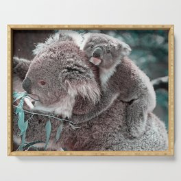 Koala, Mummy and Baby Serving Tray