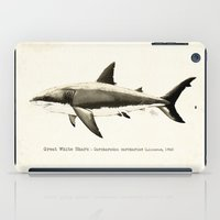 biology iPad Cases featuring Carcharodon carcharias II ~ Great White Shark by Amber Marine
