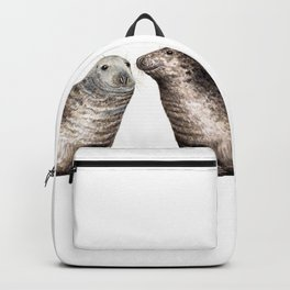 Grey seals(Halichoerus grypus) Backpack