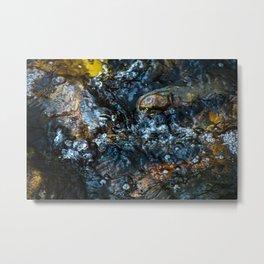 Creek Bubbles Metal Print