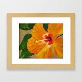 Golden Glow Framed Art Print