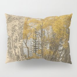Around the Bend Old and New Pillow Sham