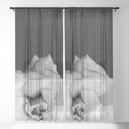 Rose Monochrome Sheer Curtain