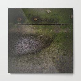Sidewalk #1 - 2014 Metal Print