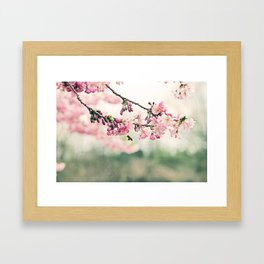 Be A Bee And Be Free Framed Art Print