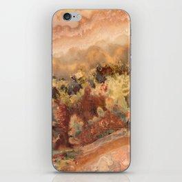 Idaho Gem Stone 13 iPhone Skin