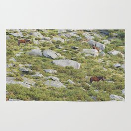Three brown horses grazing on the mountain Rug