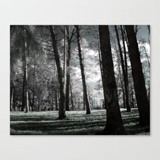 I Told You Dreams Were Real Canvas Print