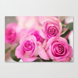 Hot Pink Roses Canvas Print