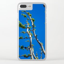 High Contrast Trees in Marseille Clear iPhone Case