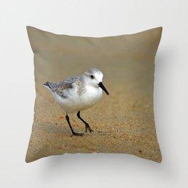 Sanderling Throw Pillow