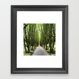 Let's take a walk, Vesterbro, Copenhagen Framed Art Print