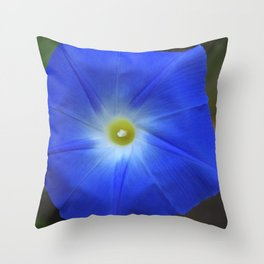 Blue, Heavenly Blue morning glory Throw Pillow