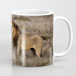 African Lion in Kenya Coffee Mug