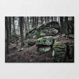 Algonquin Park, Ontario Canvas Print