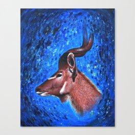 Vanishing Kudu Canvas Print