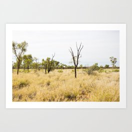Outback Vista Art Print