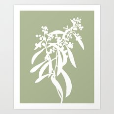 Acacia in Sage Green - Original Floral Botanical Papercut Design Art Print