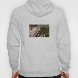 Dry Grass, Moss, and Rock Hoody
