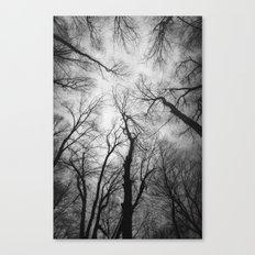 Vertigo 2 Canvas Print