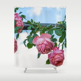 Roses Flowers Pink Shower Curtain