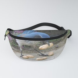 Jay Weighs the Options Fanny Pack
