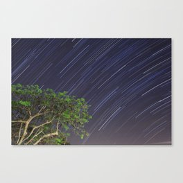 South over Suburbia  Canvas Print