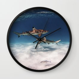 Hello, Sharks! Wall Clock