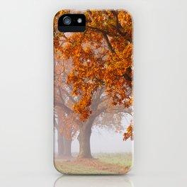 Oaks in the misty Autumn morning (Golden Polish Autumn) iPhone Case