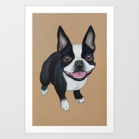 terrier Art Prints featuring Boston Terrier by PaperTigress