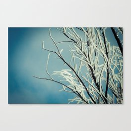Bitter End Canvas Print