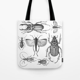 Vintage Beetle black and white drawing Tote Bag