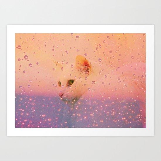 White Cat, rainy Day Art Print