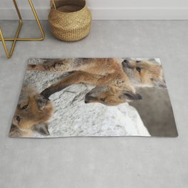 Watercolor Fox, Red Fox 18, Union Reservoir, Boulder Rug