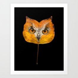 Autumn Owl-1 Art Print
