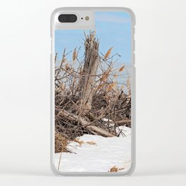 Treasure Trove Clear iPhone Case