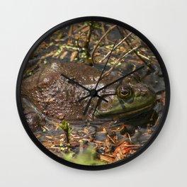 Bullfrog Wall Clock