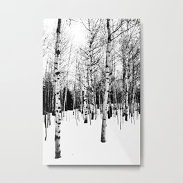 WhiteTrees Metal Print