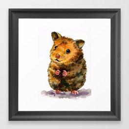 Hamster I Framed Art Print