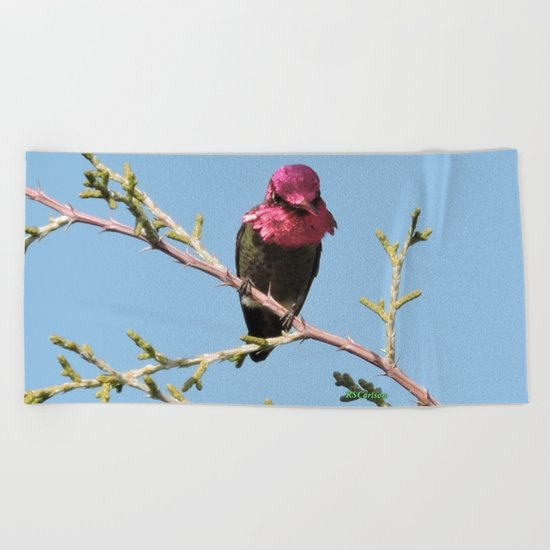 Mr. Anna's Hummingbird in Ideal Light Beach Towel