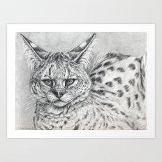 Serval G005 Art Print