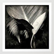 Fallen of da jungle Art Print