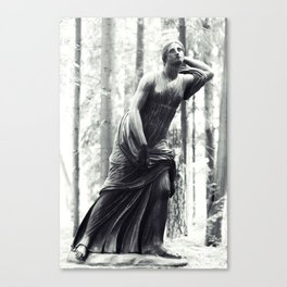 Entrance To Serenity V Canvas Print