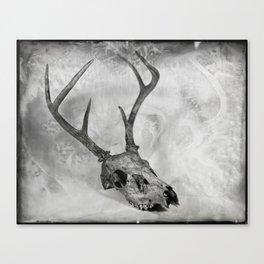 Whitetail Deer Skull (Buck #2) - 8x10 Tintype Photo Canvas Print