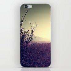 Landscape Sunset iPhone & iPod Skin