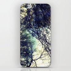 Dreamy Trees iPhone & iPod Skin