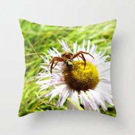 Watercolor Spider, Crab Spider 02, Lost Creek Wilderness, Colorado Throw Pillow