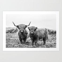 Highland Cow & Calf Art Print
