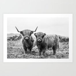 Highland Cow & Calf Art Print