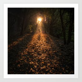 Autumn Fantasy : Let the Light Guide You Art Print